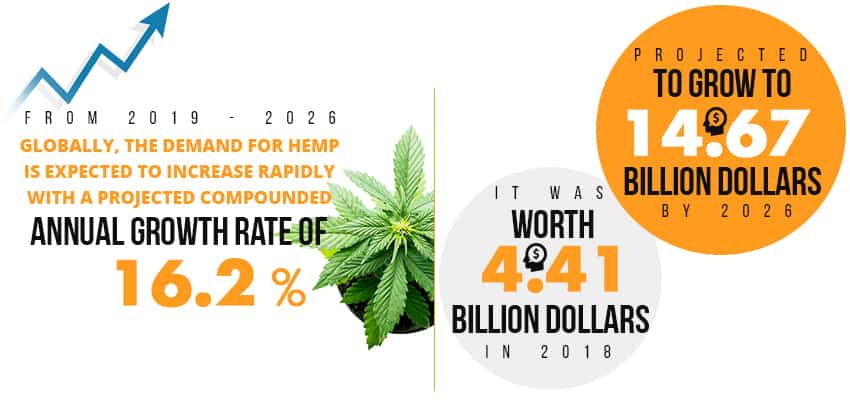 Hemp-Infographic-Blog